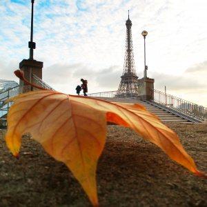 nathparis Levitation Paris